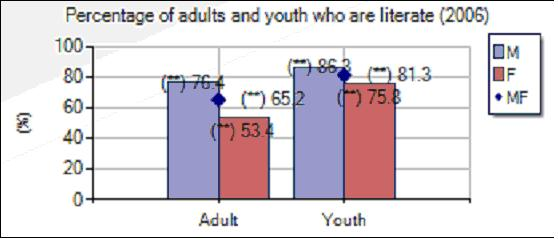 65.2% of adults and 81.3% of youth are literate